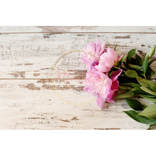 Stunning pink peonies on white light rustic wooden background. Copy space, floral frame. Vintage, haze looking. Wedding, gift card, valentine's day or mothers day background - DIGITAL DOWNLOAD PHOTOGRAPHY
