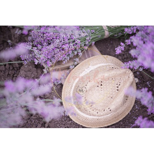 A bouquet of lavender, book and a straw hat on the soil. Lavender flowers between rows of lavender field. Purple tinting, sunny hazy, haze - DIGITAL DOWNLOAD PHOTOGRAPHY