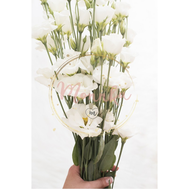 A young girl hand holding a large bouquet of fresh white flowers ...